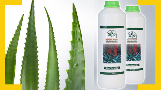 aloe gel featured